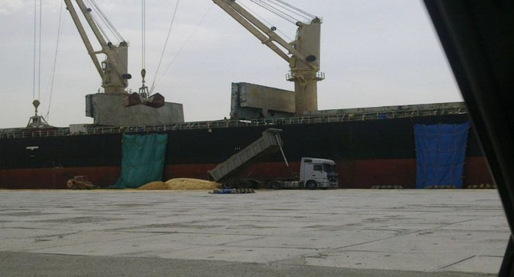 Bulk Sugar Export Vessel Charter